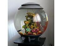 BIORB HALO TROPICAL AQUARIUM/ FISH TANK/PETS