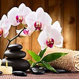 THAI MASSAGE WITH HEALTH INSURANCE Glenroy Moreland Area Preview