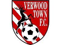 Verwood Town Football Club - Development Squad - Footballers wanted