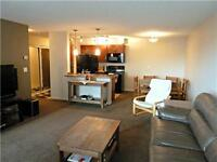 Pet friendly Exec Condo Incl Wifi,cable,utilities & Fitness Cent
