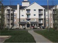 Great Condo for First Time Buyers or an Investment Property!