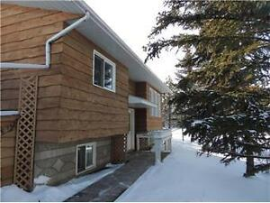 Fully Developed Bungalow with 24X24 Detached Heated Garage