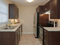 Why pay rent? RENT-TO-OWN this 3bed,2bath home today!!!!