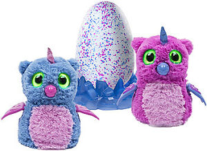 Looking for an owlicorn hatchimal Kitchener / Waterloo Kitchener Area image 1