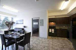 Brand New 2 Bedroom Apartments steps from Waterloo! CALL TODAY!