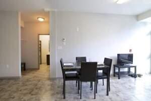 Luxury 2 Bedroom Student Rentals - Wifi & AC Included -MUST SEE! Kitchener / Waterloo Kitchener Area image 5