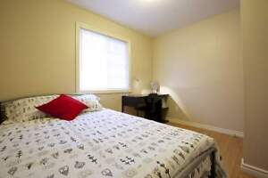 Spacious 5-bed, 2-bath Student Apts! AC, Wifi & Utilities Incl! Kitchener / Waterloo Kitchener Area image 1