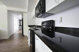 Looking for 1 roommate !! Lease starting May 1st 2017!