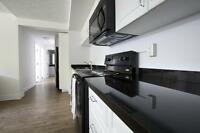 NEED A PLACE FOR AUGUST? BEAUTIFUL SUMMER SUBLET @ KING & EZRA!