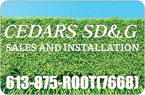 WWW.CedarsSDG.COM//Cedar Hedges/Cedar Trees/Cedar Installations.