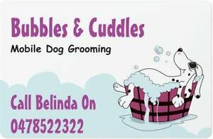 Bubbles And Cuddles Mobile Dog Grooming Mernda Whittlesea Area Preview