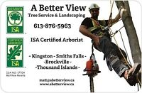 Tree Service & Landscaping