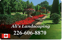 Spring Lawn Care, Clean-ups, and New Projects! FREE Estimates!
