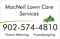 Lawn care services/ Landscaping