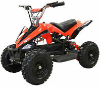 Brand New Electric ATV Deluxe 36V Battery Forward & Reverse Sale