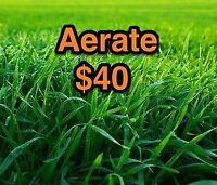 """""""BEAUTIFUL LAWN"""" !!  AERATE-call now $40.00"""