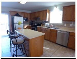 3bdr/2bath house for rent in South Windsor