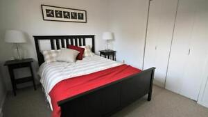 Newly Renovated - Large 1 Bed Suites - MUST SEE!