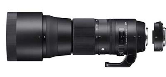 Sigma 150-600mm f/5-6.3 DG OS HSM C Lens + TC-1401 1.4x Converter for Canon EOS