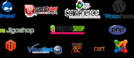 WordPress, Shopify, Magento Web Design Services