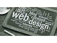 WEB DEVELOPMENT & DESIGN, SEO very prime cost