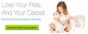 PET URINE / BAD SMELL REMOVAL SERVICE