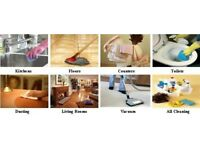 Professional Domestic and Ironing Cleaning services