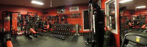 Customized Fitness Studio Gym Equipment-Amazing deal
