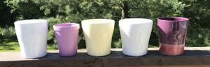 Five Orchid pots