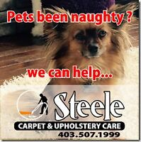 Steele Carpet & Upholstery Care (587) 254-1222 / (403) 507-1999
