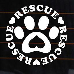 Fire Rescue Rear Window Decal - ProSportStickers.com  |Rescue Window Decals