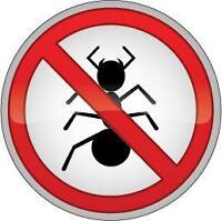 Pest Problems? Great prices for Great work.