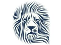Office and Domestic Cleaning Serices - Lion Cleaning Services (Scotland)