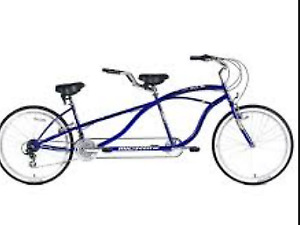 Bicycle built for 2 schwin