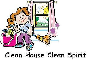 Profesional cleaner and organizer