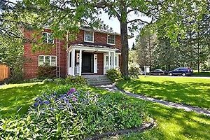 Newly Renovated 4 Bedroom House for Rent Richmond Hill, York
