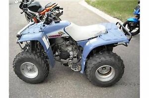 Looking for Yamaha Timberwolf or Bear Tracker parts