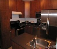 Beautiful 7 Year Old 1000 Square Feet Condo For Rent
