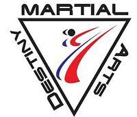 DESTINY MARTIAL ARTS (TAEKWON-DO)