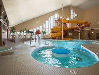 Travelodge Hotel Medicine Hat Room Special's starting  at $78.99