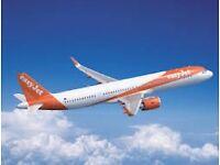 2x Flights Belfast - Ibiza 22nd sept - 29th sept