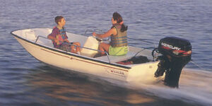 Wanted Boston Whaler