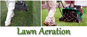 Lawn Aeration De Thatch Fertilizing Mowing Grass Seeding Cutting