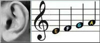EAR TRAINING, MUSIC THEORY, SIGHT READING - Come for FREE TRIAL