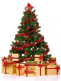 Christmas Tree Recycling/Disposal Service in the Belfast, Lisburn , Moira and Dromore Areas