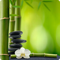Oriental Acupressure Body Treatment (Forest Hill)