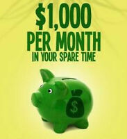 Earn an extra $500-$1000 a month