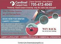 Why should you book with us for your Carpet Cleaning needs?