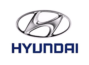 New Pre painted Hyundai Fender Bumper Hood etc... Free shipping