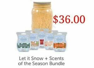 Scentsy Warmer Bundle with 5 bars.